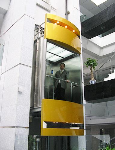 Обзорная стальная конструкция панорамный обзорный лифт